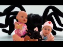 Беби Бон Куклу укусил Гигантский ПАУК Играем в Доктора с Уколами Giant spider attack Pretend ...