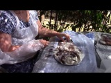 Видеозарисовка с МК интерьерная ракушка, Италия текстильный тур-3, 2016