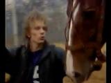 Кони в яблоках - Электроклуб