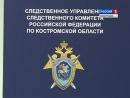 СУ СКР по Костромской области проводится доследственная проверка по факту гибели женщины и получения термических ожогов ее малол