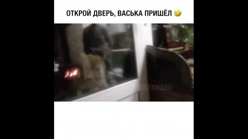 Открой дверь! Васька пришел!