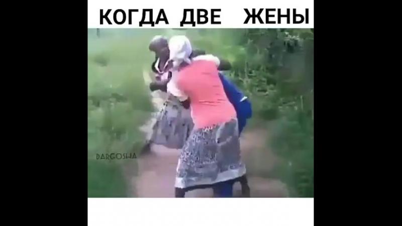Хорошо, когда две жены ** )