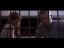 Красавица в клетке (2016)
