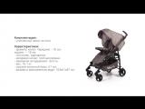 Babycare GT 4.0, коляска - трость