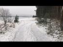 Лес 🌳 шумит. Зимняя прогулка 🚶♀️