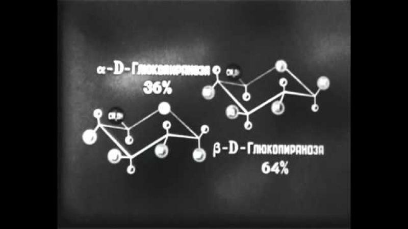 Химия. Научфильм (7). Углеводы.