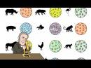5. Клеточная теория и микроскопия 9 класс - биология, подготовка к ЕГЭ и ОГЭ 5. rktnjxyfz ntjhbz b vbrhjcrjgbz 9 rkfcc - ,
