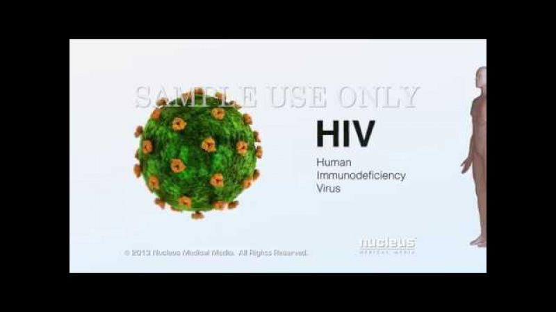 Медицинская анимация: ВИЧ и СПИД