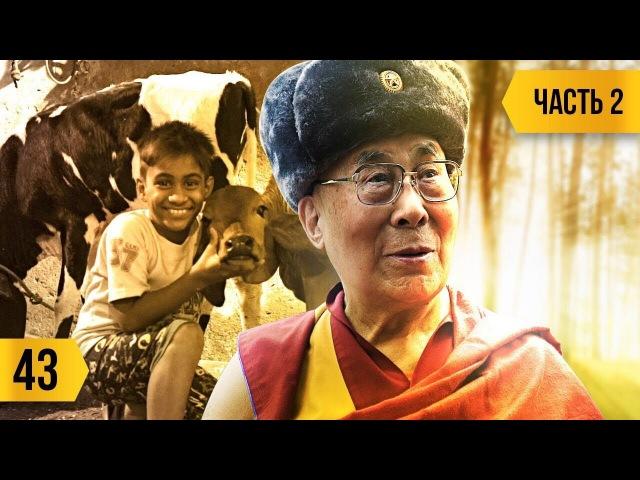 Трансформатор: Далай-лама о Евросоюзе и ИГИЛ*. Коррупция в Индии