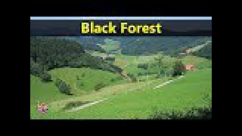 Best Tourist Attractions Places To Travel In Germany | Black Forest Destination Spot