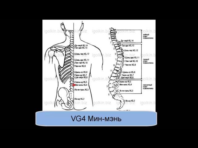 VG4 Мин-мэнь
