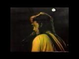 13th Floor Elevators - Dont Slander Me - 1984 Live