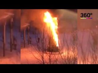 Новогодняя елка сгорела