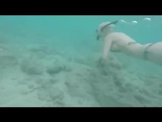 Sara x mills tries snorkeling in hanauma bay, oahu hawaii