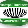 Магазин полезных товаров - Люстры Чижевского