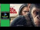 **El planeta de los simios: La guerra - Español Latino - 720p - Link en la descripcion**