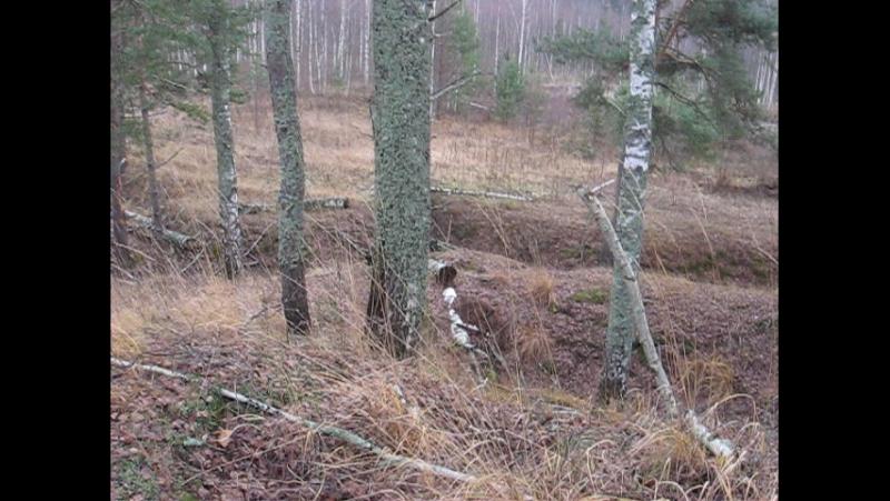 Сопки на левом берегу Б.Тудра, рядом с д. Борисово..Вид с сопки.