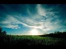 174 Гц Вибрации чистоты разума Видео HD relax Remove Negative Thoughts