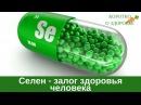 Микроэлемент СЕЛЕН залог здоровья человека