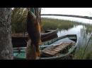 Рыбалка в Карелии- Озеро- Чогозеро- 7. 10 .2017 г
