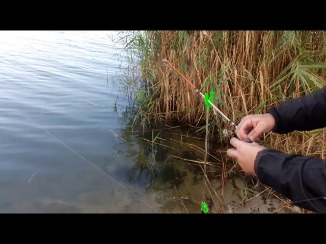 Воды много,рыбы мало или Николаевский бычок Рыбалка в Николаеве Трофей