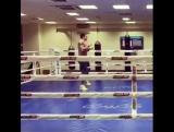 Александр Усик тренирует реакцию перед боем с Майрисом Бриедисом теннисным мячом