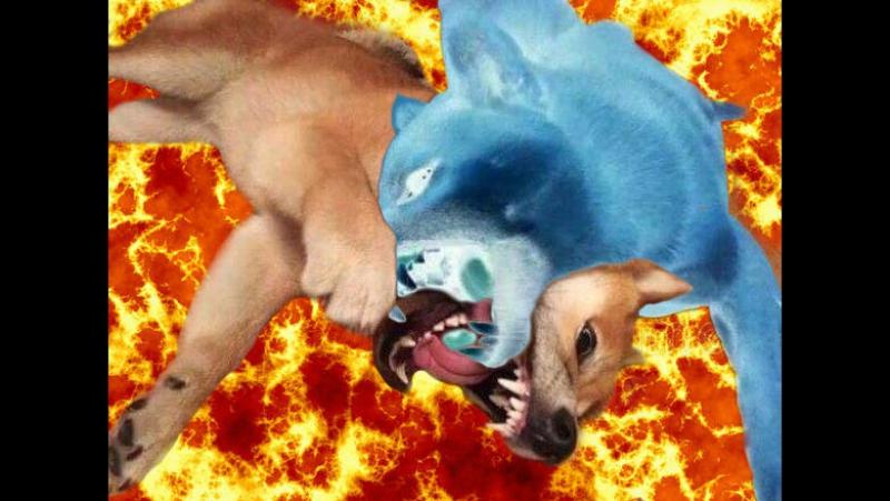 кровавый бой собаки и фантома в лаве !!