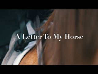 NF Magazine ›› A Letter To My Horse
