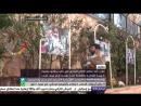 حكاية .. أحد عناصر الدفاع المدني في حلب يؤسس جمعية خيرية للعناية بالقطط