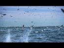 Королевство океанов. 1 серия. Народ Великой Синевы.