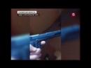 Как умерли Катя Власова и Денис Муравьёв Видео с места преступления расследовани