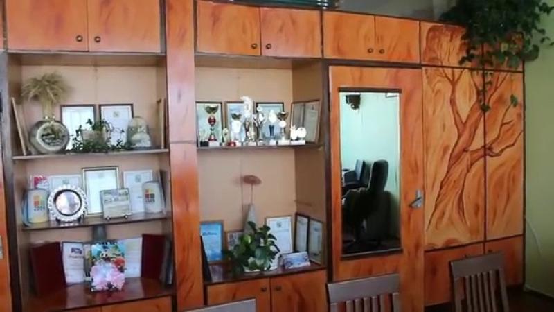 Елена Беленко, художник. Роспись мебельной стенки и нарисованные деревья в интер