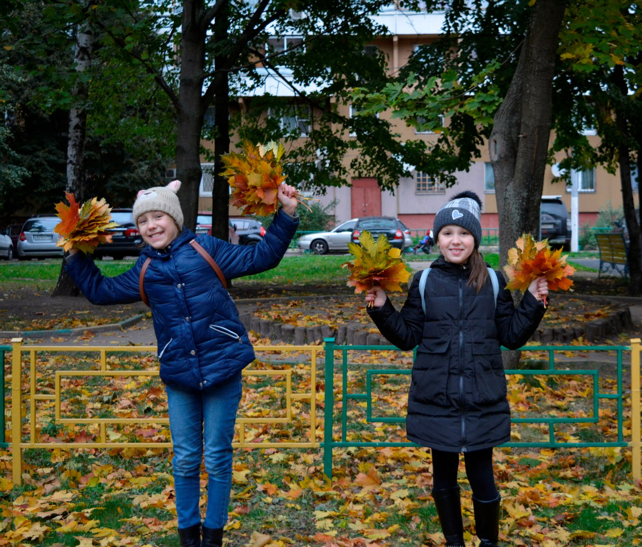 сбор осенней листвы