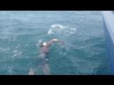 Украинке Марии Крестьянской не удалось завершить заплыв через пролив Ла-Манш.