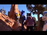 Высокогорное приключение в Колорадо - [Furry / Фурри]
