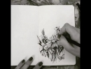 Newsky_artbook. Flowers 2