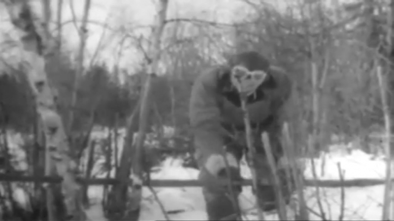 Land and Live in the Arctic 1943 U.S. Army Air Forces survival training film