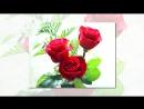 С днем рождения Катя поздравления в стихах красивые mp4