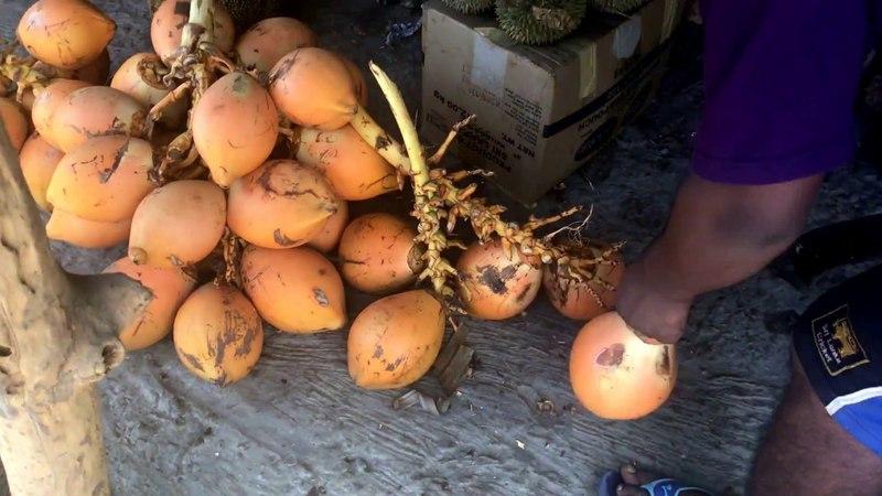 Как открыть КОРОЛЕВСКИЙ кокос 🌴 за 10 секунд