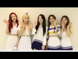 170826 1st Premium Showcas ein Japan Message| Red Velvet