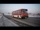 Автобус Икарус Ikarus 256 В 973 УХ 22