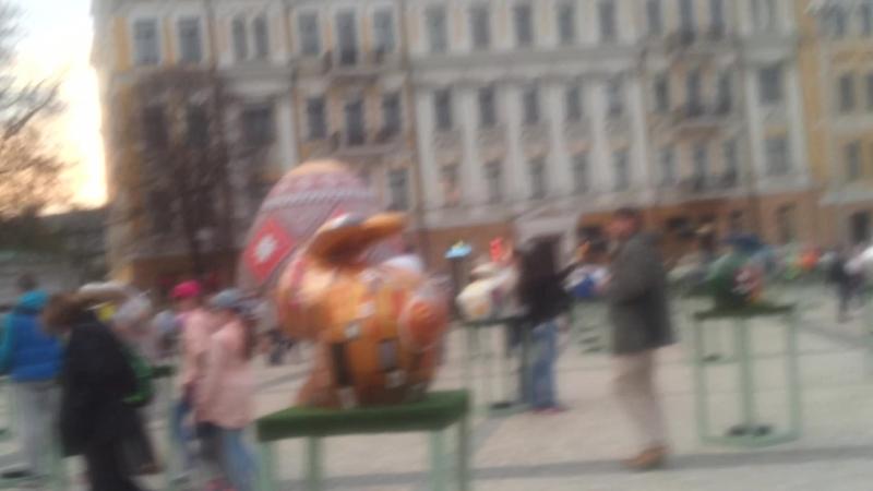 кролики на площади софиевской