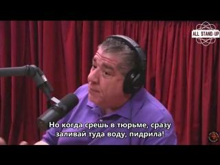 "The joe rogan experience: joey diaz tells hilarious shit stories ""he's changing flavors"" [allstandup | субтитры]"