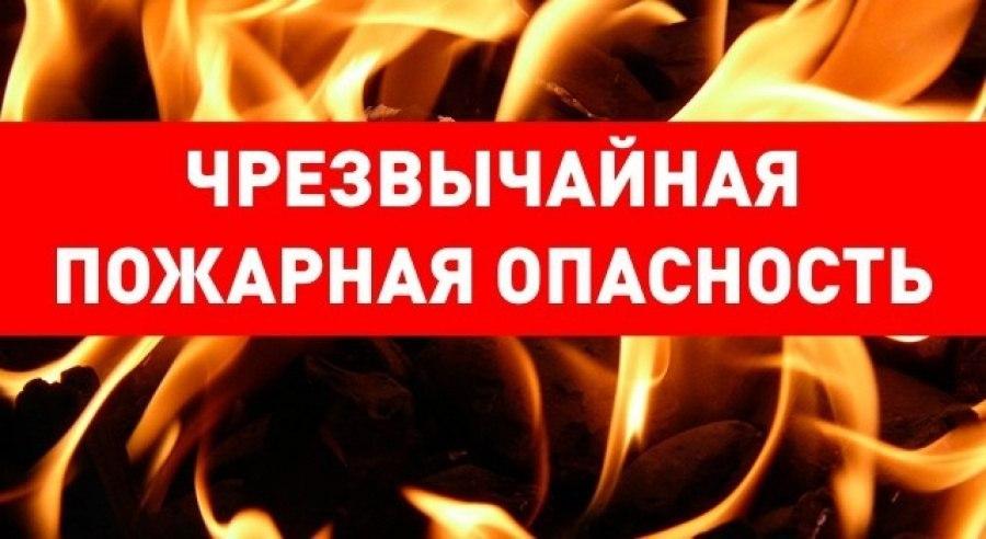 МЧС: На всей территории Ростовской области ожидается чрезвычайная пожароопасность