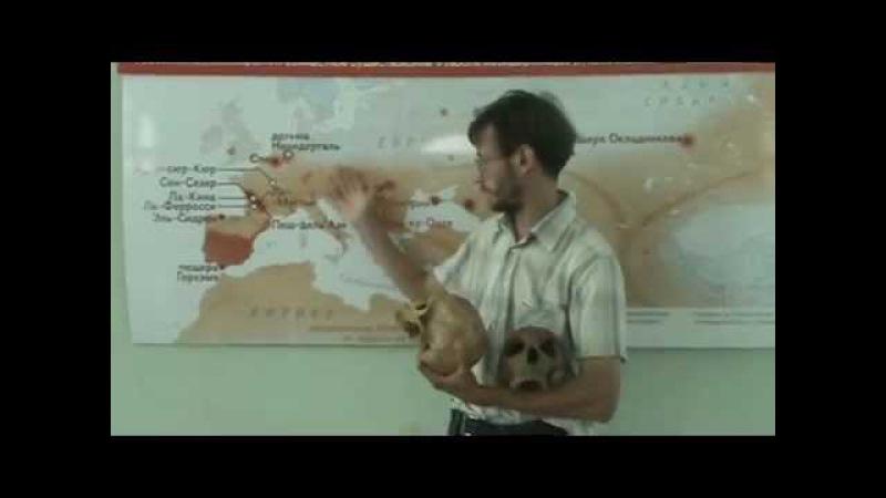 Достающее звено 13. Вымирание неандертальцев