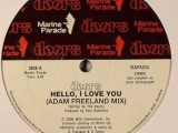 Adam Freeland - Hello, I Love You (The Doors Remix)