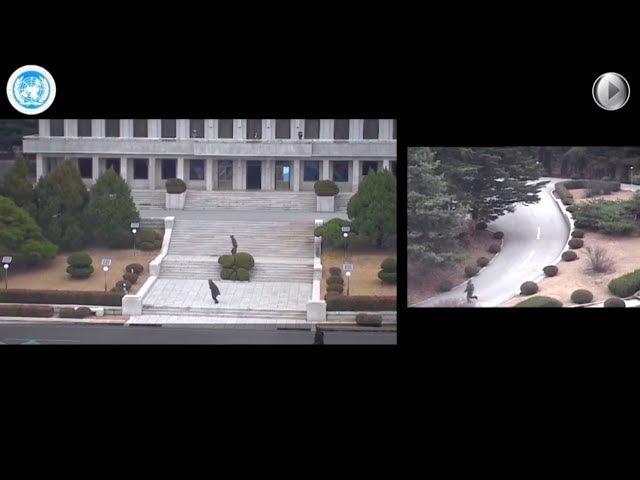 Опубликована видеозапись побега солдата КНДР в Южную Корею