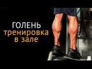Как накачать икры ног тренировка на голень