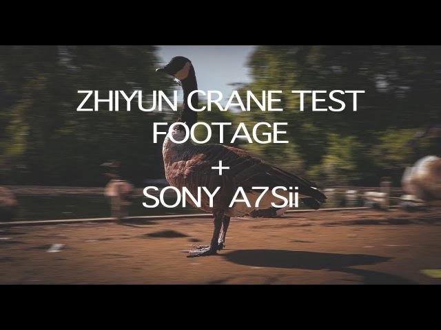 ZHIYUN CRANE V2 TEST FOOTAGE SONY A7Sii 120 FPS