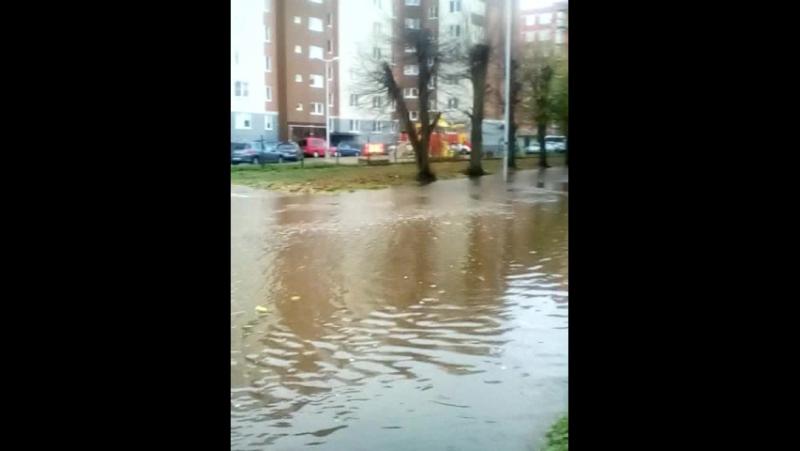 наводнение в Калининграде,ул. Зои Космодемьянской